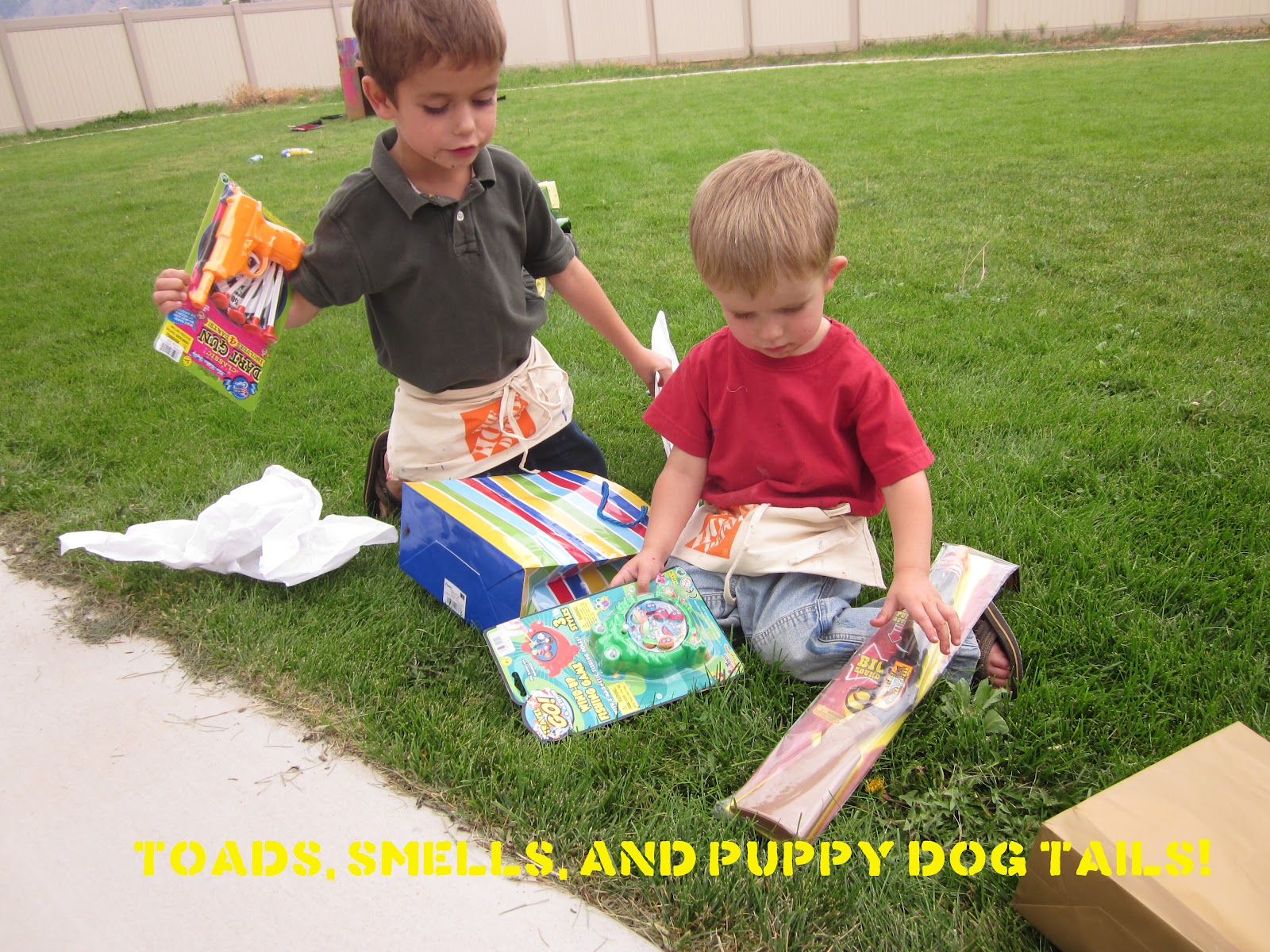 toads  smells  and puppy dog tails  construction birthday