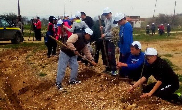 Δενδροφύτευση από τους μαθητές στον οικισμό του Μαΐστρου