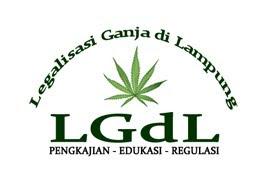 Legalisasi Ganja di Lampung