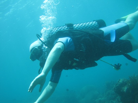 Bali Diving Tours and Adventure