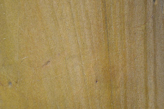 NATURAL TEXTURES smooth tree.jpg