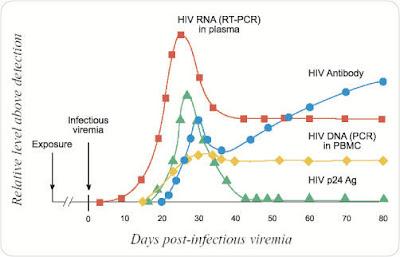 Medical laboratory and biomedical science interpretation of hiv serologic testing results - Test hiv p24 periodo finestra ...