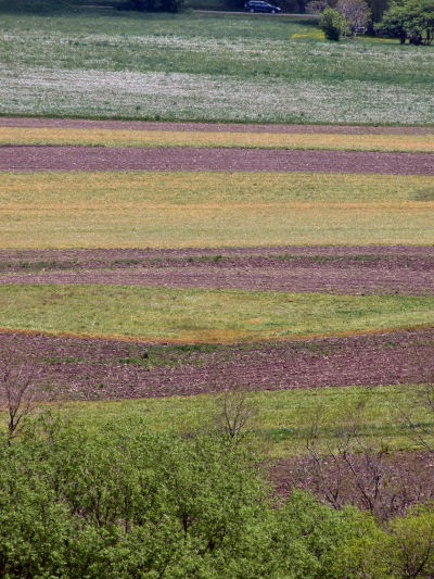 stripes of plowed land on hillside