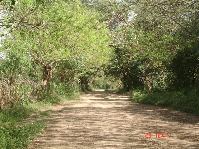 Imag Paisaje Honduras_2