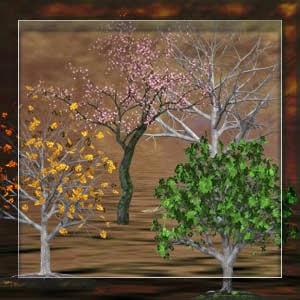 http://2.bp.blogspot.com/-4G-j6mMDRM4/VSXfBF_A5eI/AAAAAAAADJE/QHJfOQ0P1TU/s1600/Mgtcs__trees_2015.jpg