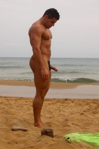Hunks Without Trunks
