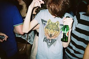 es un bobo disfrazado de lobo, auuuuuuu