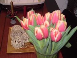 oh,ma sono tulicani? (camilla 4 anni )