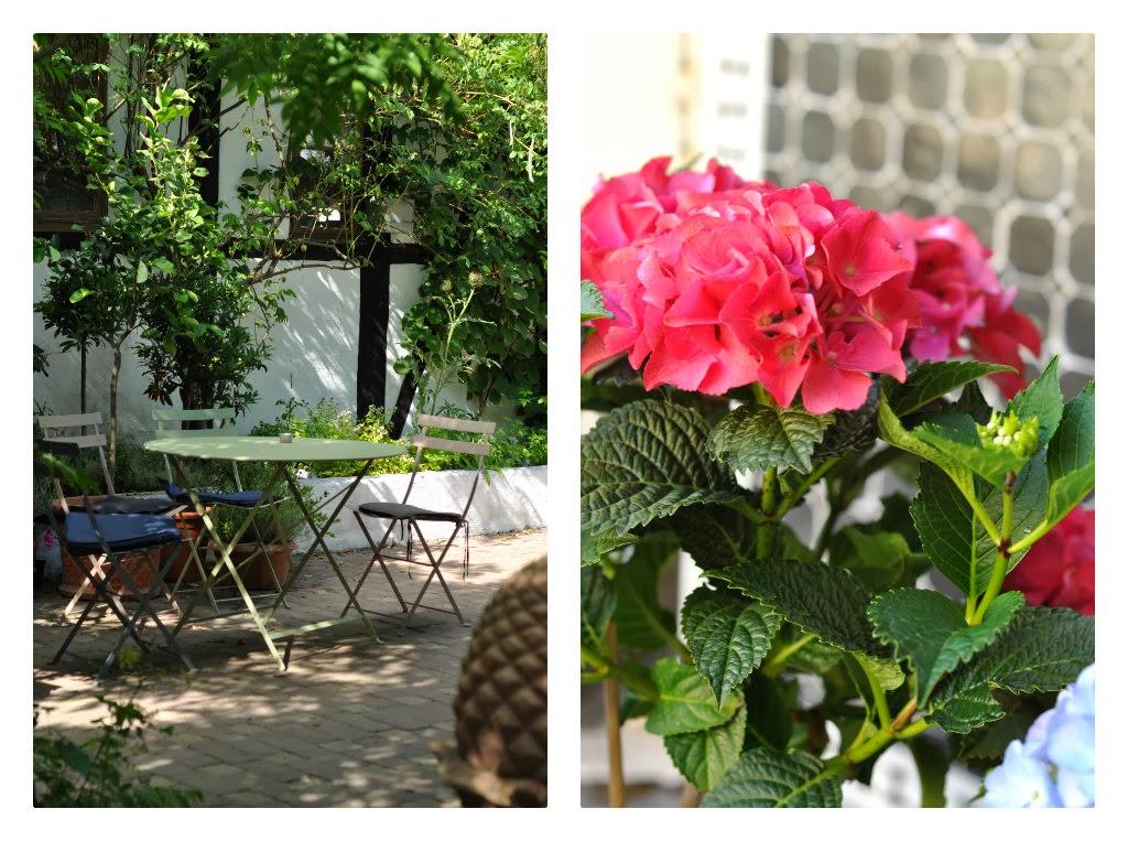 skyggefuld plet i haven, siddeplads i haven, siddeplads i gården, hibiscus