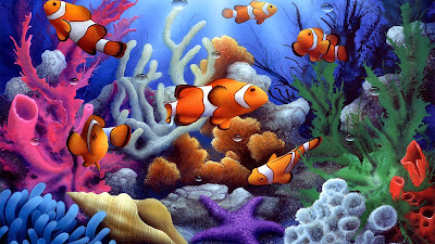 Underwater coral free fish wallpaper