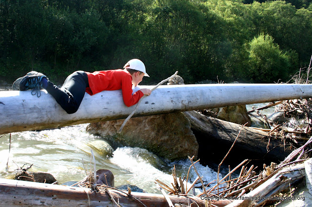 Child climbing log over a river