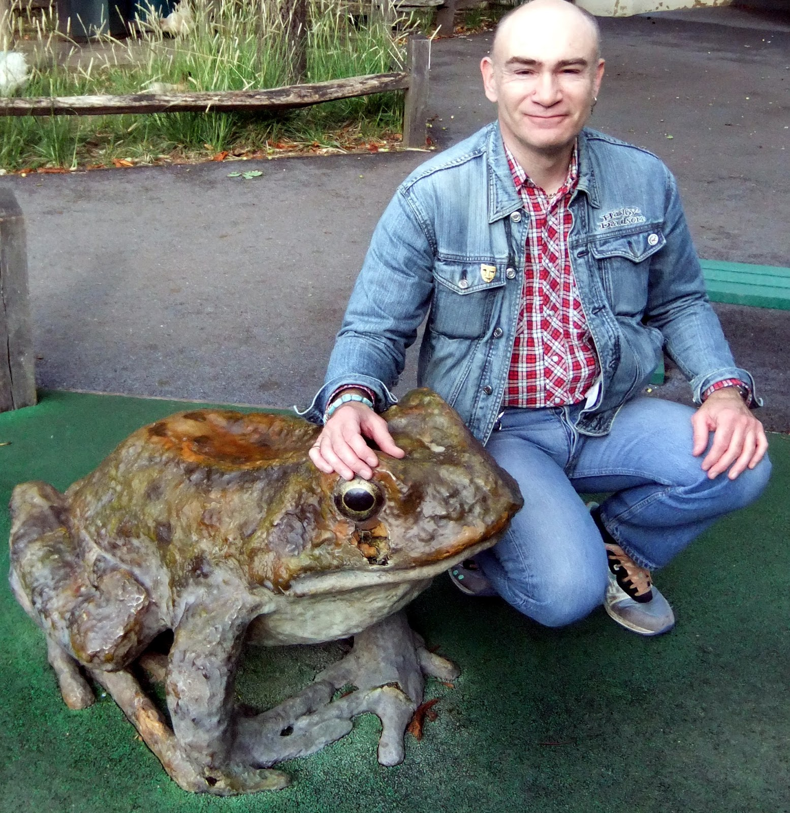 The biggest frog in the world 70
