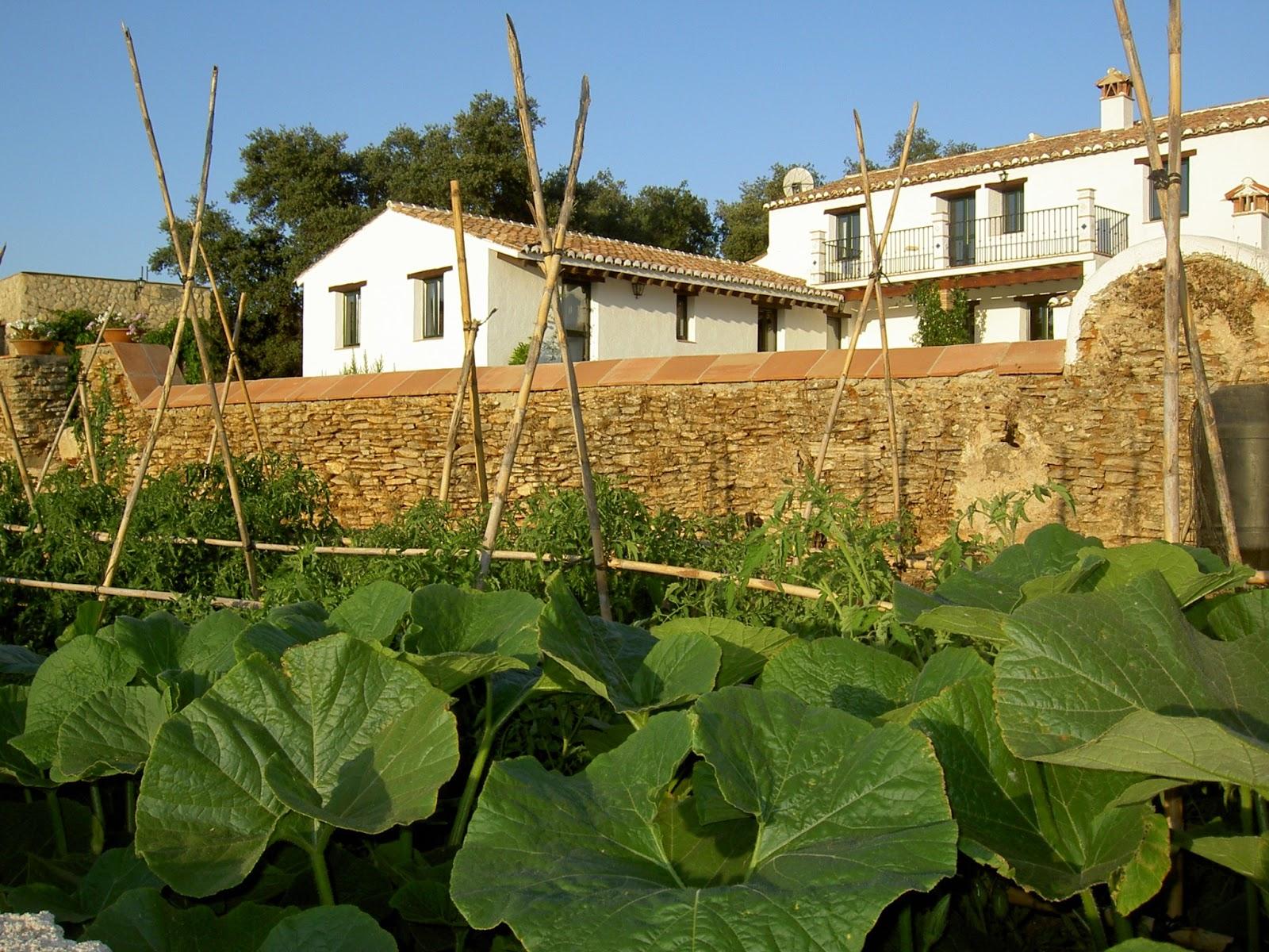 Algaba de ronda m laga eco albergues andaluc a for Cristalerias en algeciras