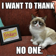 Labels: Grumpy Cat
