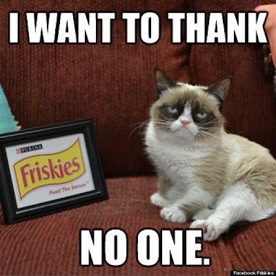 "Funny cat pictures ""I Want To Thank"""