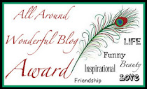 wonderful blog award