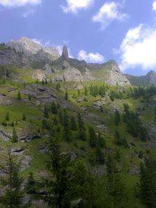foto / Valea Cerbului - spre Vf. Omu