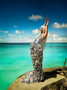 STORIES WALL LIFESTYLE - Animal Planet Mermaids Girls