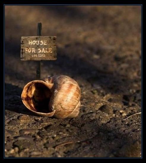 contra-la-crisis-risas-vender-la-casa