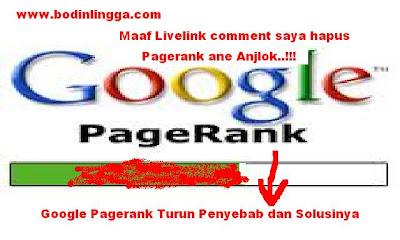 Penyebab dan Solusi Google pagerank turun
