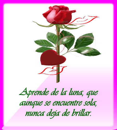 Poemas De Amor Fotos - VIDEOS Y POEMAS DE AMOR 2. fotos YouTube