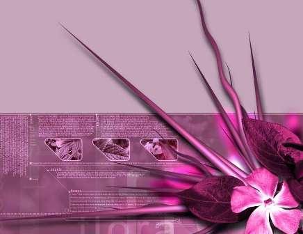 cute pink backgrounds for desktop. pink desktop wallpapers