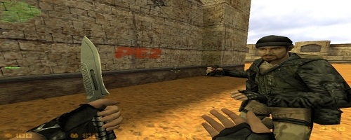 Counter-Strike 1.6 Professional Edition 2 Free version Game free