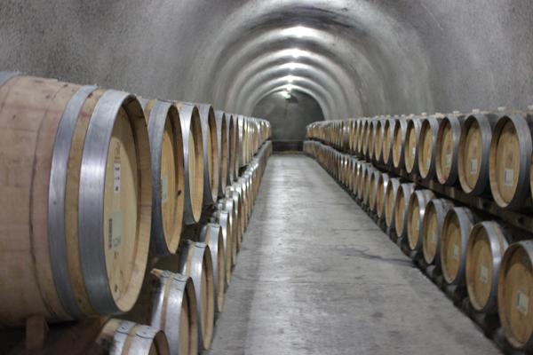 napa wine tour