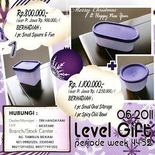 Level Gift LG Tulipware November - Desember 2011