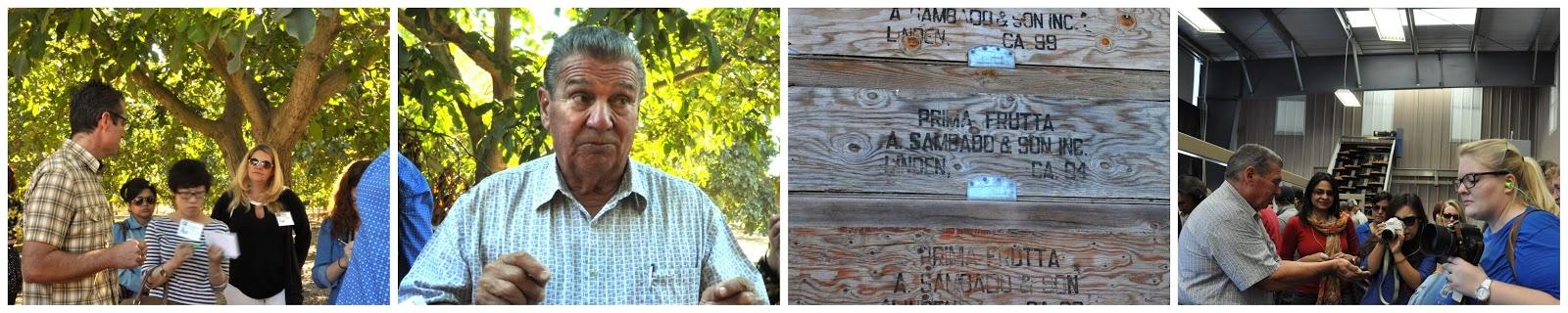 Walnussernte, Linden - Kalifornien bei Primanoce