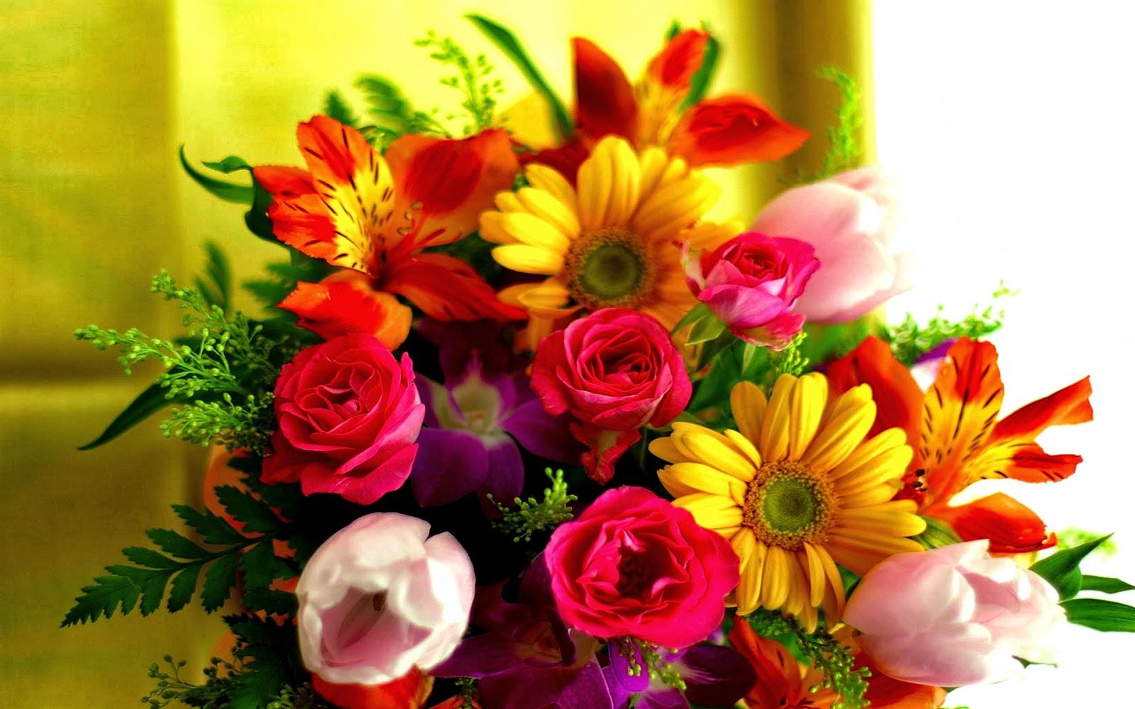 Flowers hd wallpapers izmirmasajfo