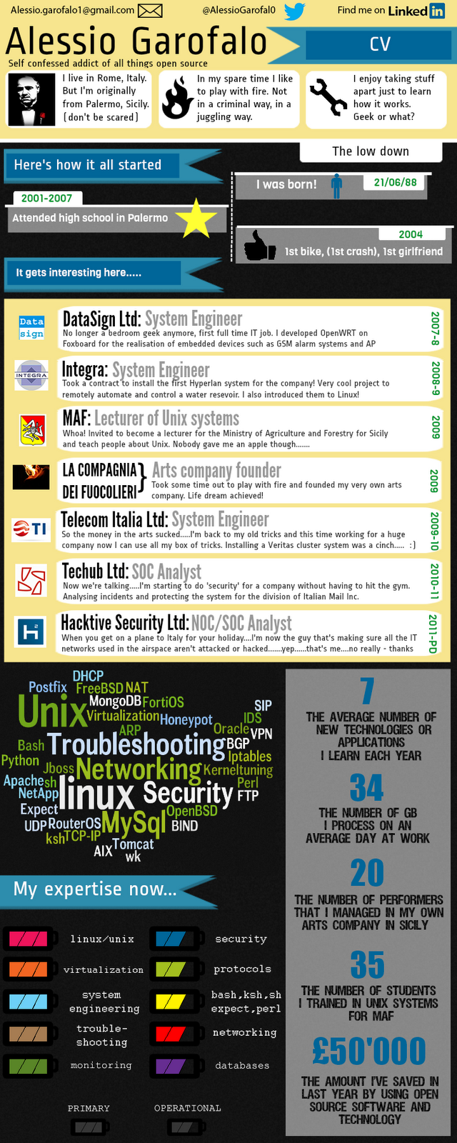 infographic resume CV