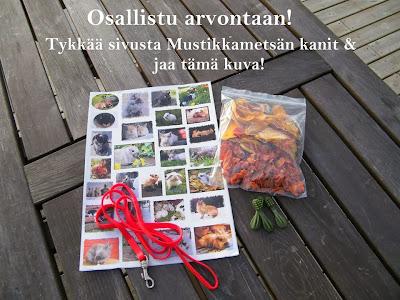 https://www.facebook.com/mustikkamesankanit?fref=ts