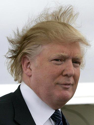 The Donald joins with other  reixun donald trump house florida. Donald Trump39s New   makitaserviciopanama com
