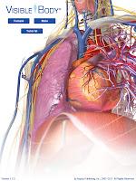 3d Human Anatomy1