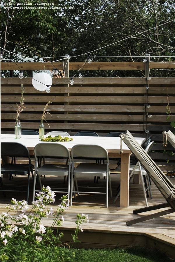 trädäck, kiwiplanta, kiwiträd, kiwi, uteplats, uteplatsen, altan, altanen, inredning, inredningsblogg, blogg, bloggar, trädgård, ecochair, diy stort bord, ecochairs, vilstol, vilstolar, miniväxthus, växthus, trädgården,