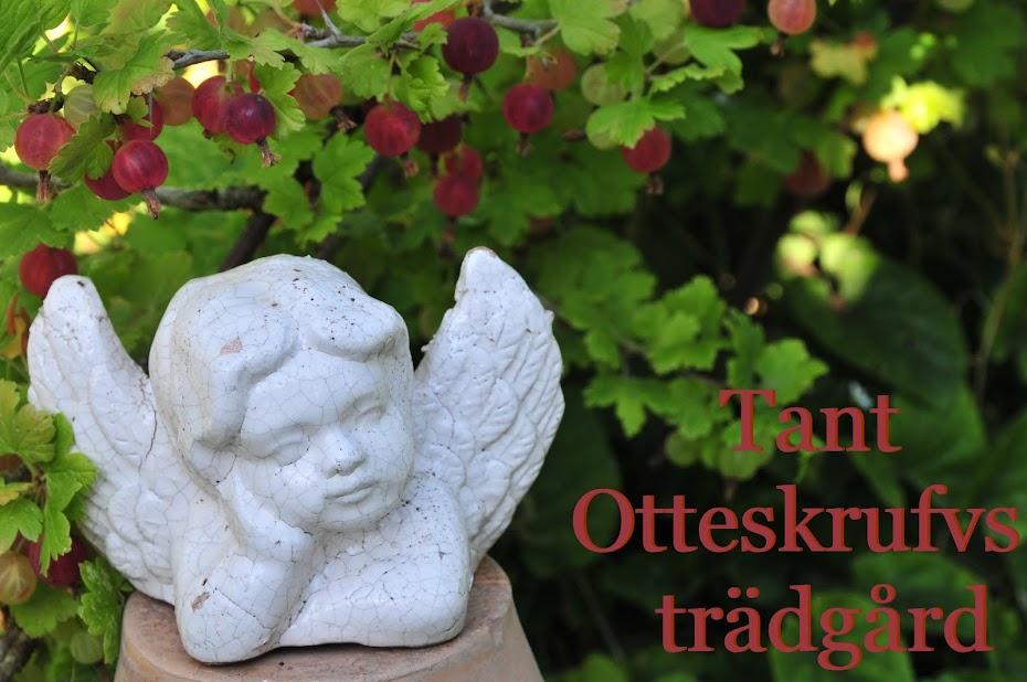 Tant Otteskrufvs trädgård