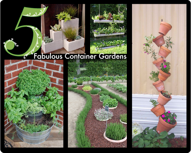 Interesting Herb and Container Gardens