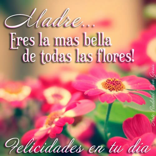 Frases Dia De La Madre: Madre Eres La mas Bella De Todas Las Flores