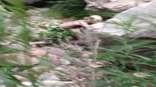 Weird Creature Caught Near Great Wall Of China