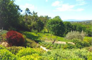 Jardins d'agrément