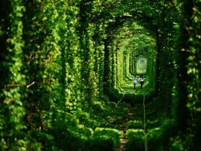 O Túnel do Amor na Ucrânia