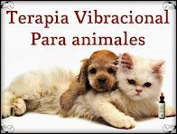 Sistema Vibracional Saint Germain para Animales