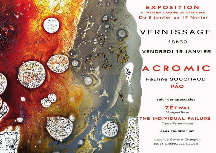 Exposition au CRDP de Grenoble.