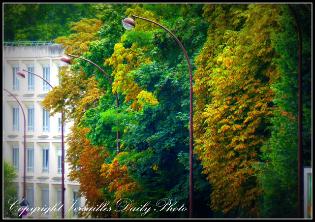 Autumn Fall colours Versailles