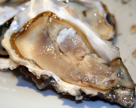 Eating Oysters Are not Pregnant Fast?