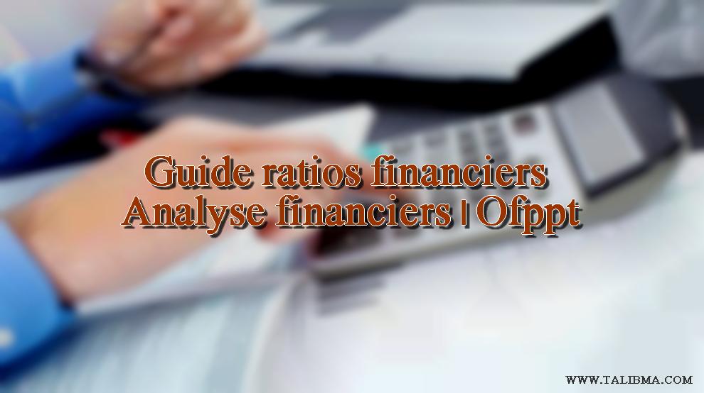 analyse financière par les ratios