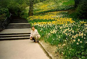 1999.4, 德国花岛 Mainau ,岛上有活着翩飞的蝴蝶博物馆。(点击图片)