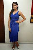Nikitha Narayan glam pics in blue-thumbnail-5