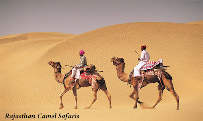 India Travel - Rajasthan Camel Safaris